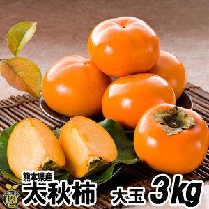 太秋柿3kg(6〜9玉)【送料無料】熊本県 柿 贈答 ギフト