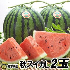秋スイカ L−2玉入【送料無料】熊本産 西瓜