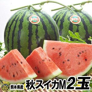 秋スイカ M−2玉入【送料無料】熊本産 西瓜