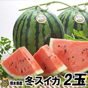 【送料無料】熊本産 秋スイカ M−2玉入