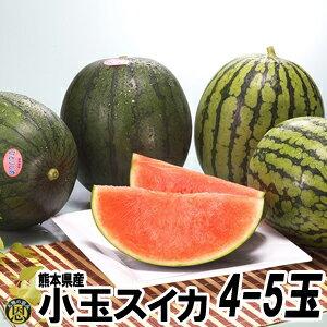 小玉スイカ4〜5玉【送料無料】熊本県産 西瓜