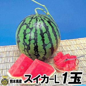 スイカ Lサイズ 1玉(約6kg)【送料無料】熊本県産 西瓜