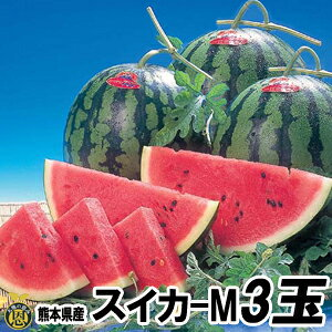 スイカ Mサイズ 3玉(約5kg)【送料無料】熊本県産 西瓜