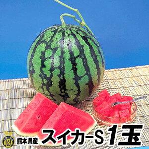 スイカ Sサイズ 1玉(約4kg)【送料無料】熊本県産 西瓜