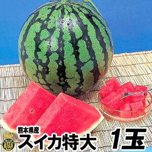 スイカ 特大サイズ 1玉(約9kg)【送料無料】熊本県産 西瓜