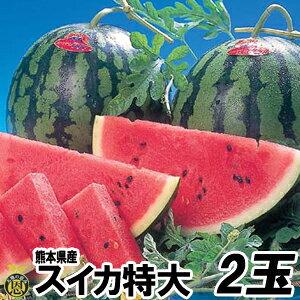 スイカ 特大サイズ 2玉(約9kg)【送料無料】熊本県産 西瓜