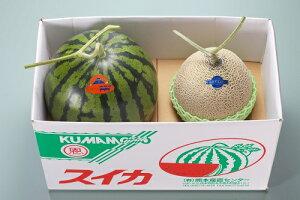【送料無料】熊本県産 スイカ1玉・マスクメロン1玉