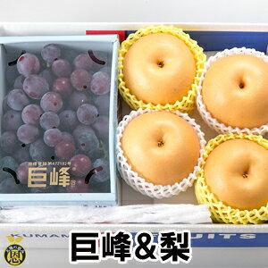 巨峰1kg&梨4-5玉【送料無料】贈答品 ギフト 高級ぶどう 梨 豊水 詰合せ