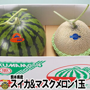 スイカ1玉・マスクメロン1玉【送料無料】熊本県産 西瓜 高級メロン ギフト