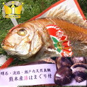 お食い初め 鯛 はまぐり セット【国産 はまぐり】700gの明石・淡路島の天然鯛を炭火焼【祝い飾り付き】【祝鯛】【送料…
