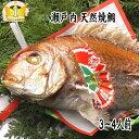【お食い初め 鯛】焼鯛 送料無料 祝い飾り付き 当店1番人気の 焼き鯛 700gアップ淡路・明石・瀬戸内の天然焼き鯛を炭…