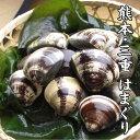 【国産 蛤】熊本産 天然 活はまぐり 100g ぷりぷりの 地蛤を砂抜きしてお届け!はまぐり は、お祝い事には、かかせな…