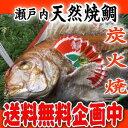 【送料無料】 【祝鯛】 天然焼き鯛 1.2kgアップ お食い初め お祝い用【祝い飾り付き】 炭火焼の祝い鯛 淡路島・明石鯛を心を込めて焼き上げます。 おくいぞめ...