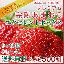 あまおう ex 福岡産 プレミアム 大粒完熟 9〜12粒 いちご 苺 イチゴ ギフト 農家直送