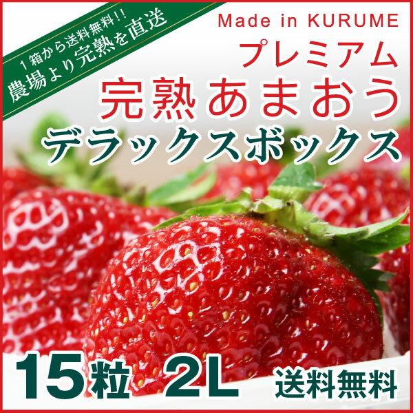 あまおう 福岡産 プレミアム大粒 完熟あまおう 400g以上×1箱 いちご 苺 ギフト 農家直送 ex dx