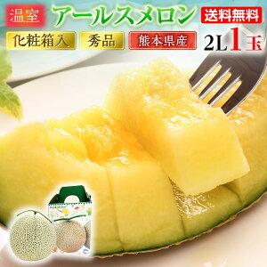 母の日 ギフト メロン アールスメロン 秀品 2L/1玉 熊本県産 温室 送料無料 高級メロン フルーツ 果物 甘い フルーツの里 産地直送 S常