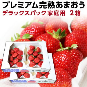 あまおう 福岡産 完熟あまおう 280g以上×4パック いちご 苺 ご家庭用 農家直送 デラックスパック 2箱 産地直送