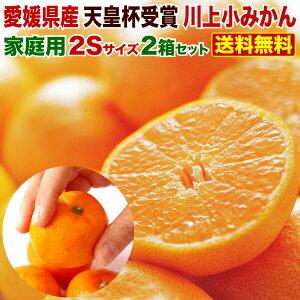 みかん 送料無料 訳あり 5kg 小玉 愛媛 家庭用 ...