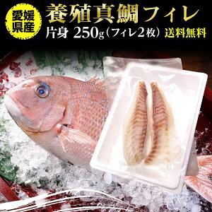 鯛 刺身 フィレ マダイ 真鯛 フィレ(皮無し)2枚 250g 送料無料 海鮮 魚介 冷凍 真空パック 応援セール