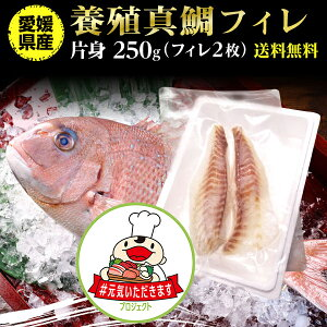 鯛 刺身 フィレ マダイ 真鯛 フィレ(皮無し)2枚 250g 送料無料 海鮮 魚介 冷凍 真空パック 応援セール 【#元気いただきますプロジェクト】