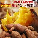 お歳暮 ギフト 予約開始 早割 さつまいも 安納芋 鹿児島 種子島産 生芋 糖度40度 特Aプレミア蜜芋5kg 焼き芋にして冷…