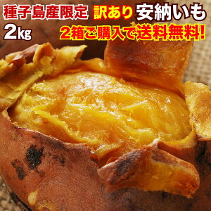 安納芋 さつまいも 訳あり 鹿児島 種子島産 安納いも 蜜芋 2S〜Lサイズ混合 2箱以上 送料無料 生芋