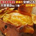 安納芋 さつまいも 訳あり 鹿児島 種子島産 安納いも 蜜芋 (8kg x 1箱) MLサイズ限定 送料無料 生芋