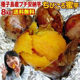 さつまいも 安納芋 訳あり あんのういも 安納いも (さつまいも) 生芋 鹿児島 種子島産 産地直送 プチ安納芋 (8kg x 1箱) ちびころ蜜芋8kg 小さいサイズ 予約開始