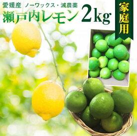 レモン 国産 愛媛 瀬戸内 ご家庭用 2kg(17玉前後) 産地直送 ノーワックス・減農薬