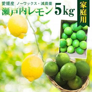 レモン 国産 愛媛 瀬戸内レモンご家庭用 5kg(42玉前後) 産地直送 ノーワックス・減農薬