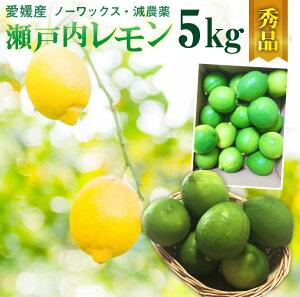 レモン 国産 愛媛 瀬戸内レモン 5kg(42玉前後) 産地直送 ノーワックス・減農薬 秀品