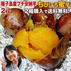 安納芋 訳あり あんのういも 安納いも (さつまいも) 生芋 種子島産 産地直送 プチ安納芋 2kg 2箱ご購入がお得 ちびころ蜜芋2kg 小さいサイズ