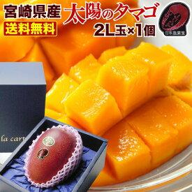 父の日 果物 フルーツ ギフト マンゴー 宮崎マンゴー 太陽のタマゴ 初夏のフルーツ 2L玉(350〜449g) 太陽のたまご JA西都協賛光センサー完全選果 mango プレゼント 産地直送 Y常