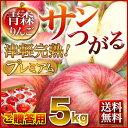 りんご 青森 津軽 サンつがるりんご ポイント10倍 完熟 プレミアム 5kg(14〜18玉) ギフト プレゼント 送料無料 農家直…