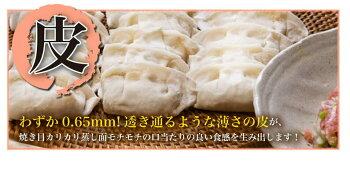 餃子送料無料冷凍ひと口サイズプレゼント博多流屋台の味屋台の味・博多一口餃子25個×5パック+タレ付カリッともちもち肉汁ギュー