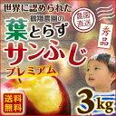 お歳暮 ギフト りんご 青森 葉とらず サンふじ 贈答用 3kg(8〜10玉) 送料無料 プチギフト フルーツ お誕生日 内祝い …