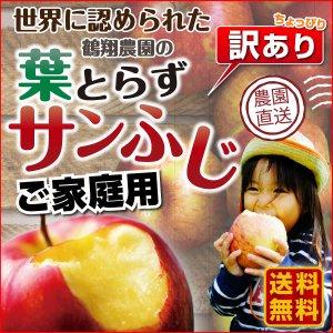 りんご 青森 葉とらず サンふじ ご家庭用 3kg(8...