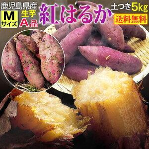 さつまいも 紅はるか A品 生芋Mサイズ130g〜200g土つき 鹿児島 産地直送 5kg×1箱 送料無料 S常