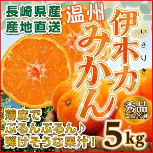 みかん 伊木力 長崎 早生 温州ミカン 秀品 5kg(...