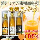 愛媛みかんジュース 3大共選飲み比べ(川上 日の丸 真穴)蜜柑 ミカン ストレート