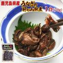 うなぎ 国産 鹿児島県 肝の山椒煮 70g×1袋(ウナギ 鰻 蒲焼き 国内産)