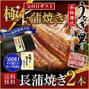 うなぎ 蒲焼き 父の日 国産 鹿児島産 長焼き2本セット 約110g×2 うなぎの里 ギフト(鰻 ウナギ)