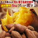 さつまいも 安納芋 鹿児島 種子島産 生芋 糖度40度 特Aプレミア蜜芋5kg ギフト 焼き芋にして冷凍保存OK 送料無料 お誕…