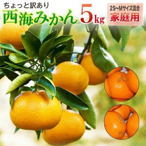 西海みかん 長崎 早生 温州ミカン 家庭用 5kg 送料無料 産直 甘い蜜柑 300g保証