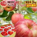 りんご 青森 津軽 サンつがるりんご 完熟プレミアム 3kg(7〜8玉)贈答用 ギフト 送料無料 農家直送 リンゴ