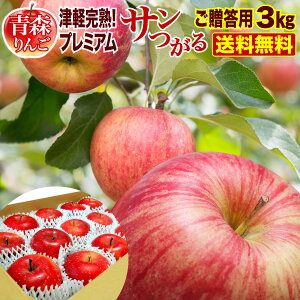 サマーセール中ポイント10倍 りんご 青森 津軽 サンつがるりんご 完熟プレミアム 3kg(7〜9玉)贈答用 ギフト プレゼント 送料無料 農家直送 リンゴ 果物 フルーツ
