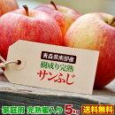 りんご完熟蜜入り5kg青森県南部産樹成り完熟ご家庭用サンふじりんご送料無料