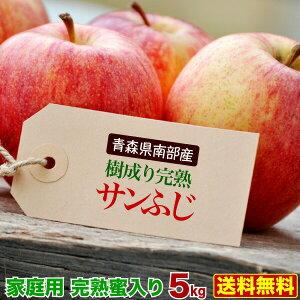 ポイント10倍 りんご 完熟蜜入り 5kg 青森県南部産 樹成り完熟 ご家庭用 サンふじりんご 送料無料