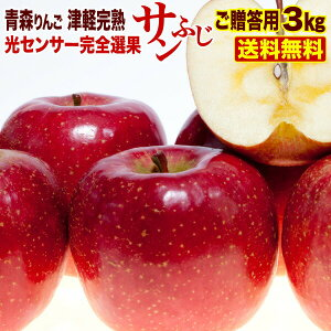 御贈答 ギフト りんご 3kg 青森産 津軽 完熟 サンふじ お誕生日 内祝い プレゼントにも フルーツ 果物 光センサー選果 送料無料 ギフト