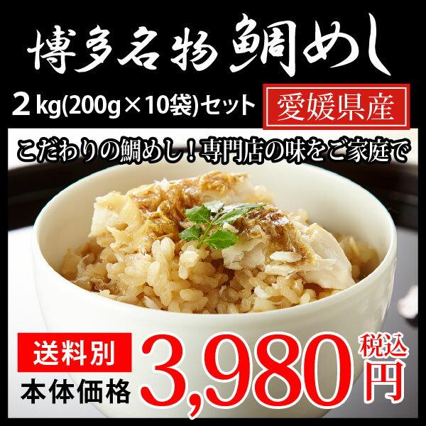 博多 鯛めし ブランド真鯛使用 200g×10食セット